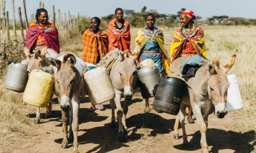 Women with their donkeys going to collect water